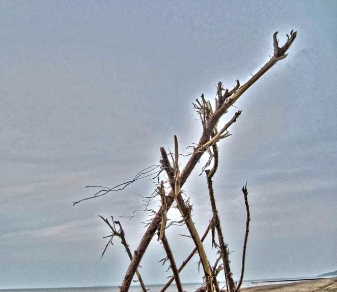 2Normandy Beach