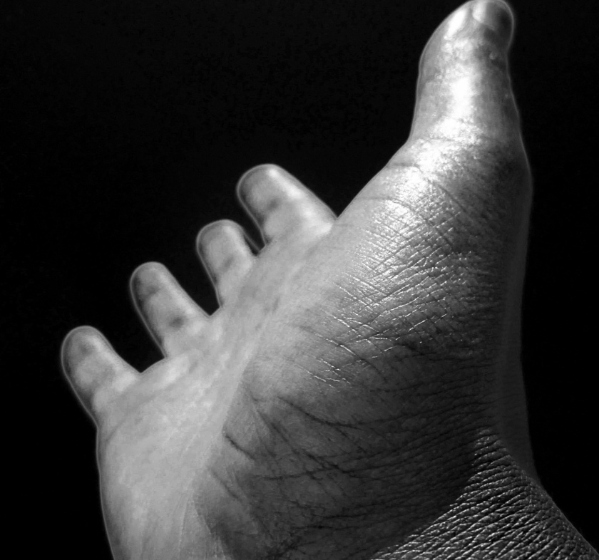 palm of a hand